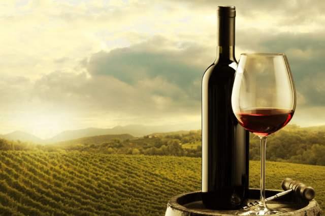 Come deguste un vino